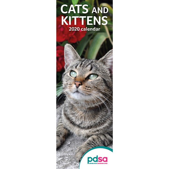 PDSA Slimline Cats & Kittens Calendar