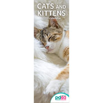 PDSA Slimline Cats & Kittens Calendar 2018