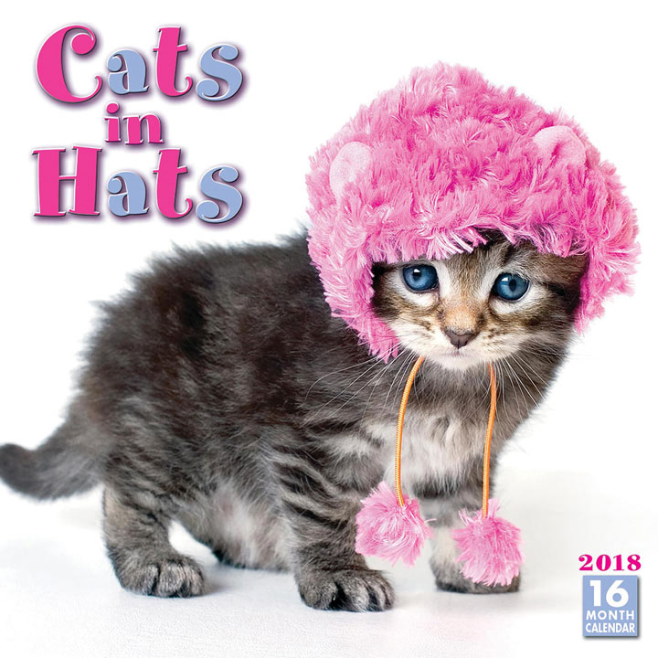 Cats in Hats Wall Calender