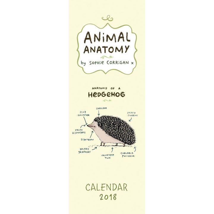 Slimline 2018 Calendar - Animal Anatomy