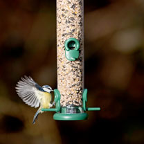 Ring Pull™ Seed Feeder