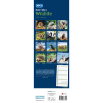 RSPCA British Wildlife Slim Calendar