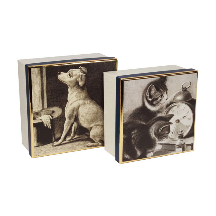 RSPCA Storage Boxes - Set of 2