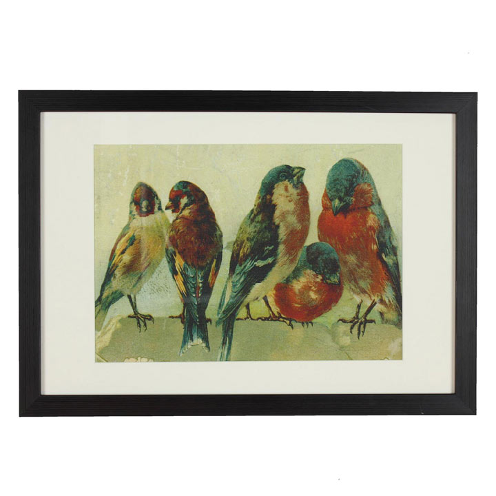 RSPCA Framed Art - Bird