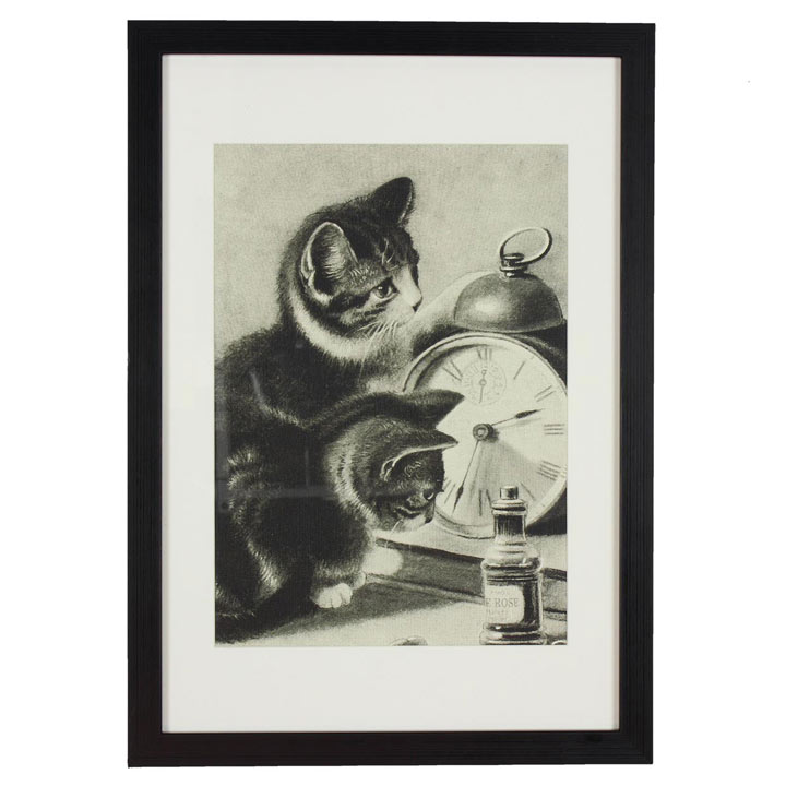 RSPCA Framed Art - Cat