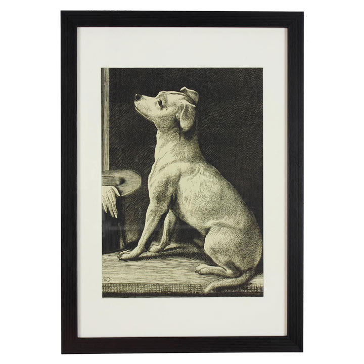 RSPCA Framed Art - Dog