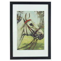 RSPCA Framed Art - Horse