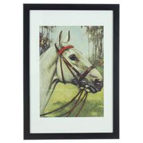 RSPCA Framed Art - Horse