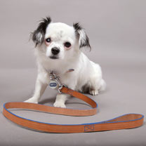 RSPCA Tan Leather Dog Lead
