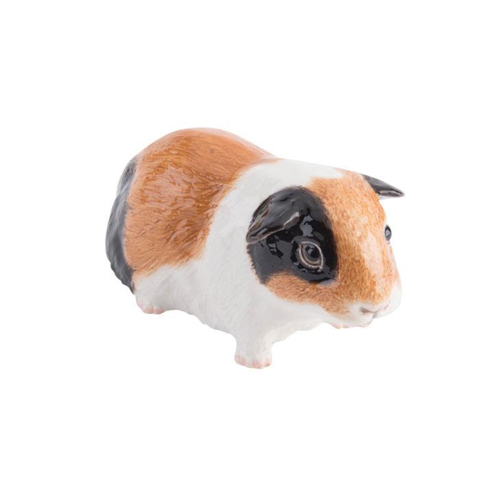 RSPCA Adorables - Tri-colour Guinea Pig