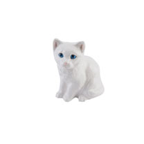 RSPCA Adorables - White Kitten