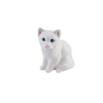 RSPCA Adorables - White Kitten