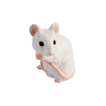 RSPCA Adorables - White Mouse