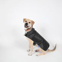 Dog Jacket - Extra Small 15-23cm