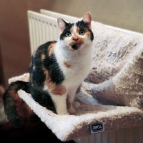 RSPCA Luxury Radiator Cat Bed