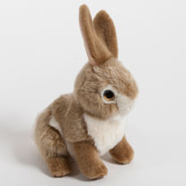 "Rabbit 9"" Toy"