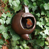 Robin Teapot Nester (Brown)