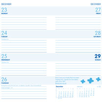 Blue Cross Diary