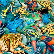 Frogs Jigsaw