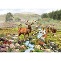 National Park Jigsaw