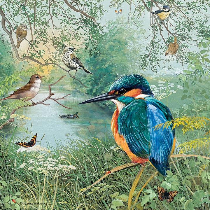 Nature Reserve Jigsaw