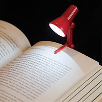 2-in-1 long lasting LED light, use as a desk light or as a book light, includes replaceable cell batteries. Colours vary.