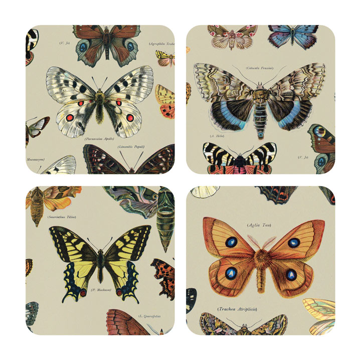 Beautiful Butterflies - Coasters