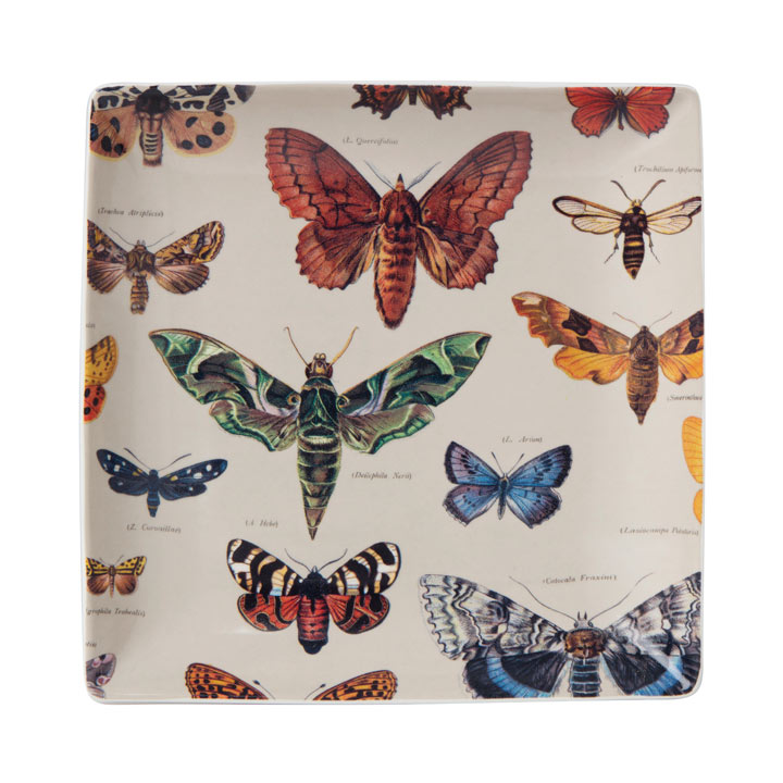 Beautiful Butterflies - Trinket Tray