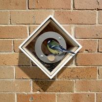 Urban Birdfeeder