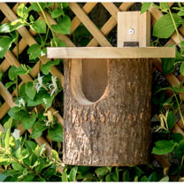 Nest Box - Robin / Tit