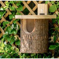 Nest Box - Robin / Tit