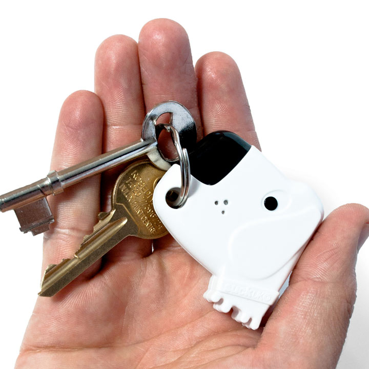 Dog Key Finder