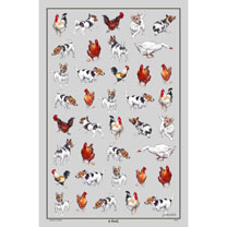 Farmyard Frolics - Tea Towel
