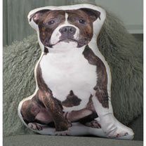 Staffordshire Bull Terrier Cushion 48 x 42cm