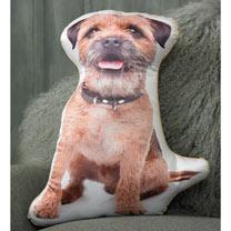 Cushion - Border Terrier 46 x 40cm