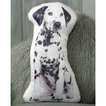 Cushion - Dalmation 52 x 30cm