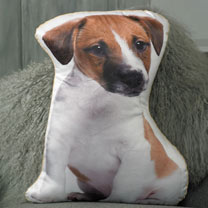 Dog Cushion - Jack Russell 47 x 37cm