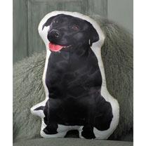 Cushion - Dog