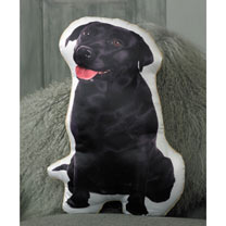 Dog Cushion - Black Labrador 49 x 30cm