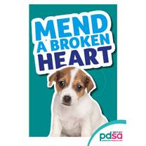 'Mend a Broken Heart'
