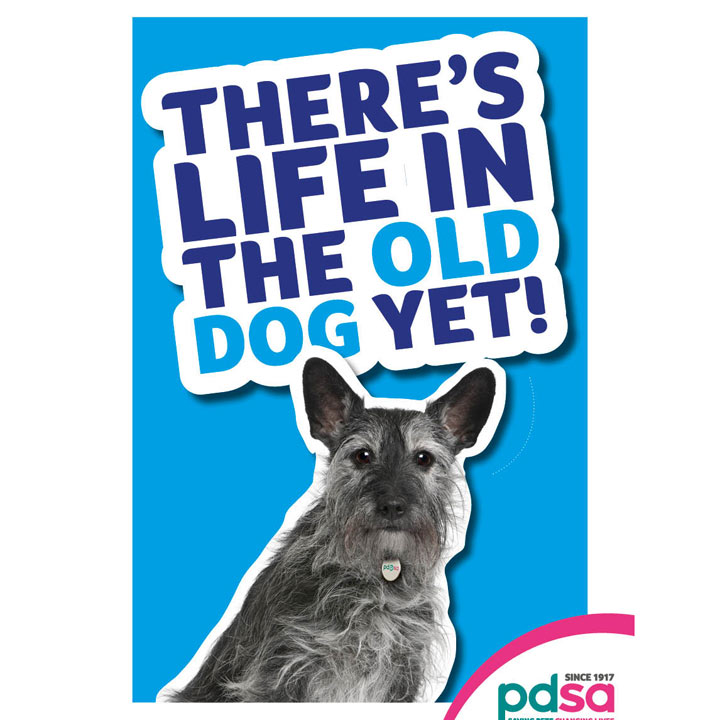 'There's Life in the Old Dog Yet'