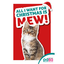 'All I Want for Christmas is Mew'