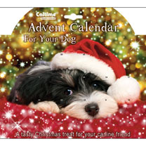 Dog Advent Calendar