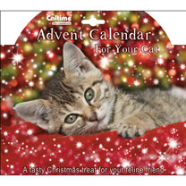 Cat's Advent Calendar