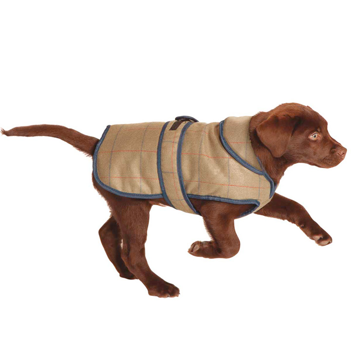 Dog Coat - Tweed