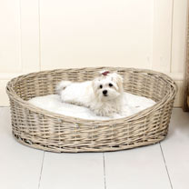 Willow Pet Basket - Small