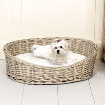 Willow Pet Basket - Large