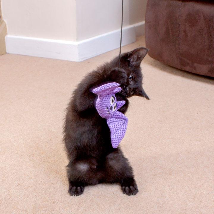 Bat Wand Toy