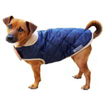 Quilted Dog Coat - Navy 55cm (DD)