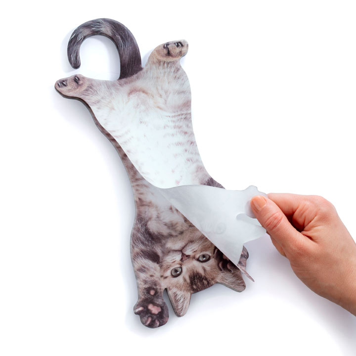 Cat Hanging Notes
